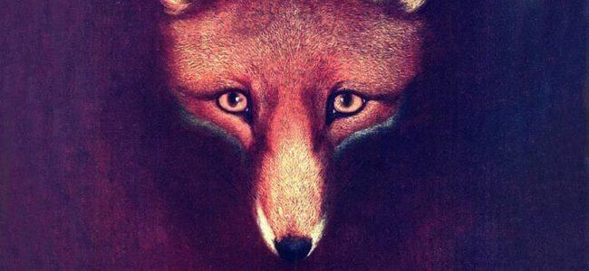 Meet reynard fox event